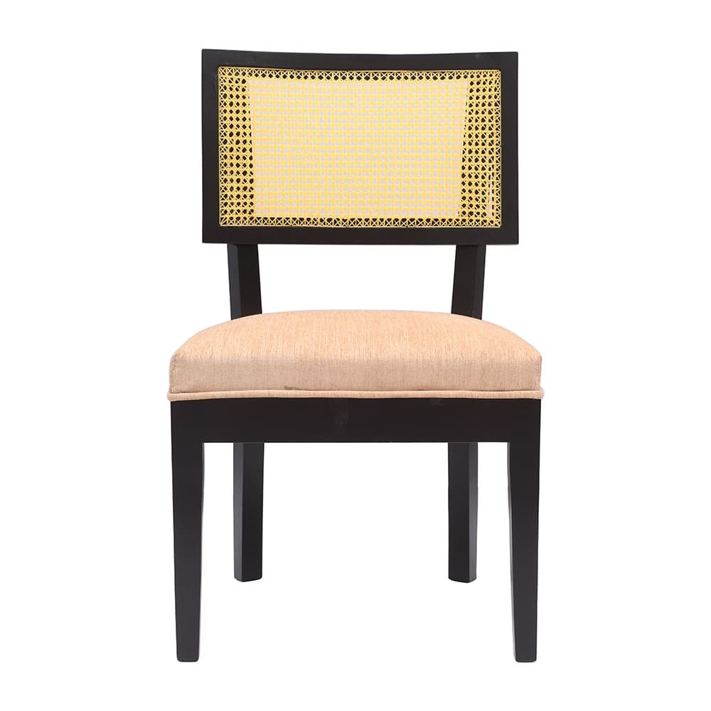 Multipurpose Chair.jpg